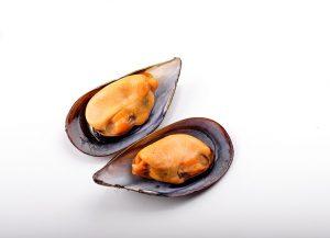 mejillon-cocido