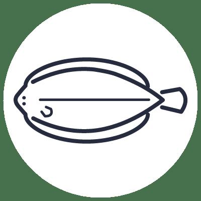 Inicio | Pescados Saturnino