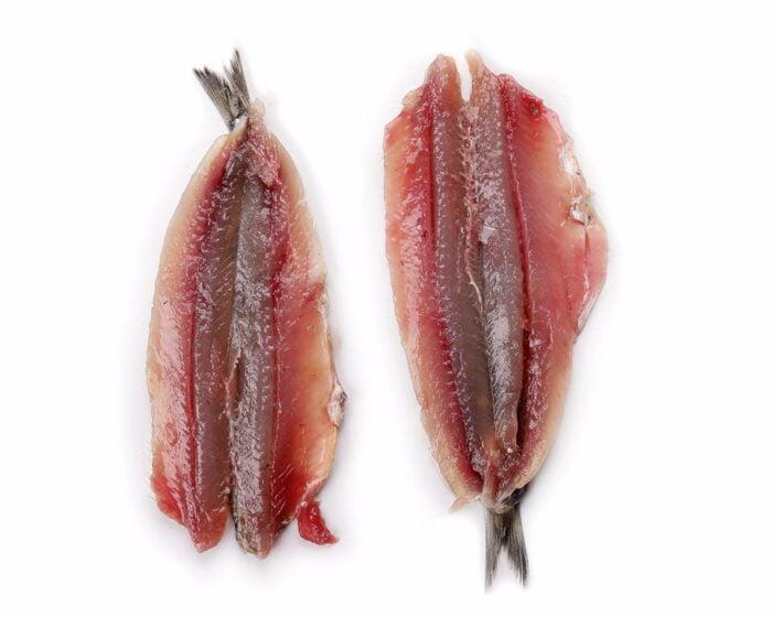Anchoa Sin Espina | Pescados Saturnino