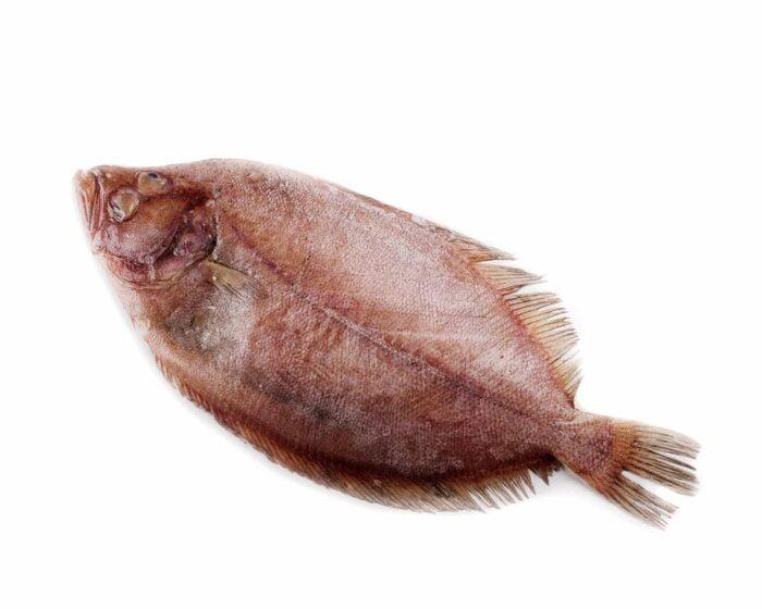 Gallo De Filete | Pescados Saturnino